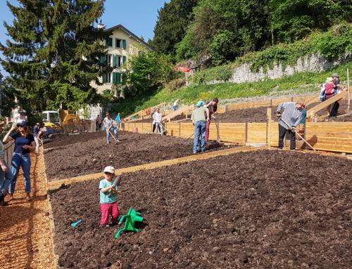 Atelier plantage du 5 mai