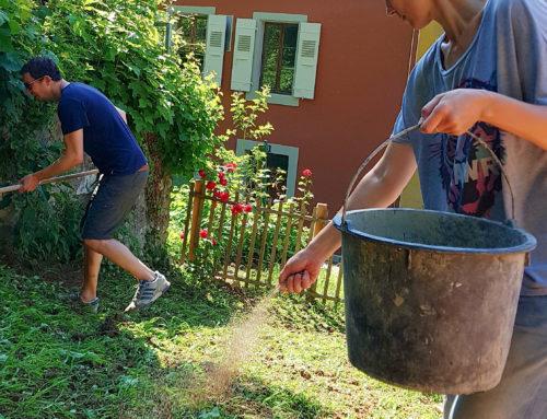 Atelier plantage du 2 juin 2018