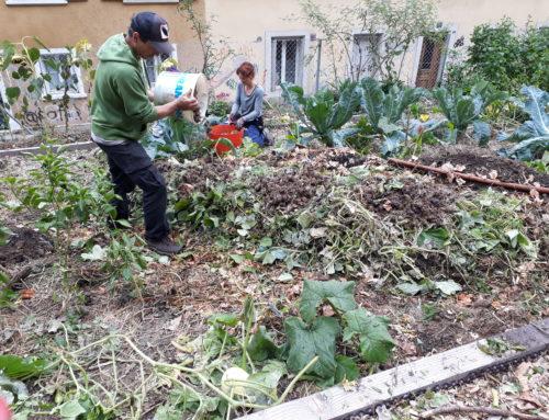 """Atelier butte """"lasagne"""", jardin communautaire plantage du Vallon, dimanche 7 octobre"""