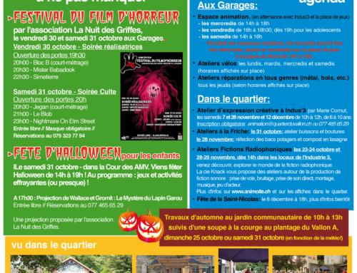 Newsletter d'octobre, novembre et décembre 2020