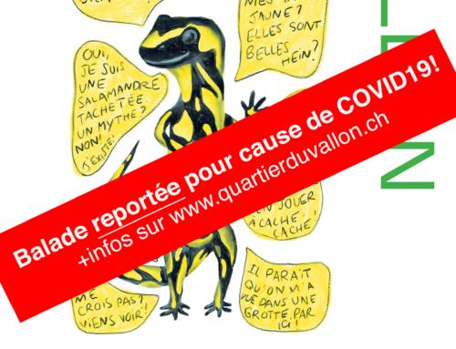 Où VALLON-NOUS? Première balade sur la thématique du Vallon écologique reportée pour cause de COVID 19!
